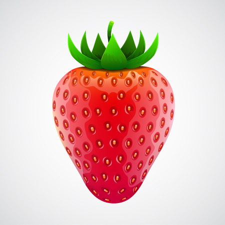 Fresh realistic strawberry. Isolated on white. Vector illustration Vector