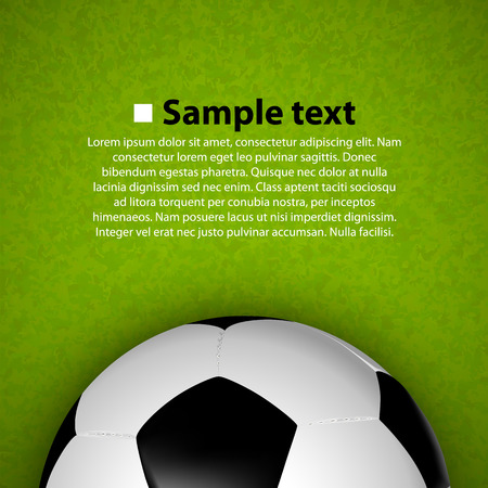 grass line: Soccer ball on the field. Vector illustration