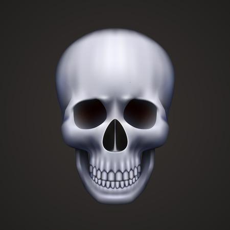 Human skull isolated on black. Vector illustration Stock Illustratie