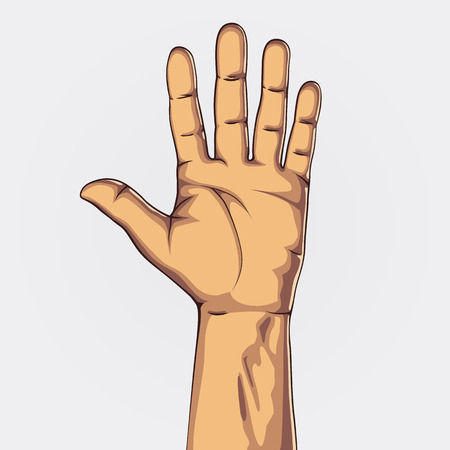 Hand showing five count. Clean vector illustration Vector