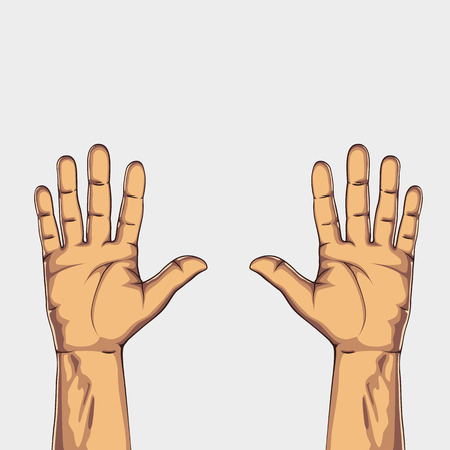 outstretched: Pair hands isolated on white background. Vector illustration Illustration
