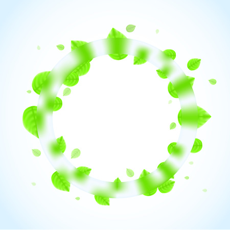 spearmint: Fresh leafs and glass background. Vector illustration Illustration
