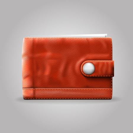clasp: Leather purse art 3d object. Vector illustration