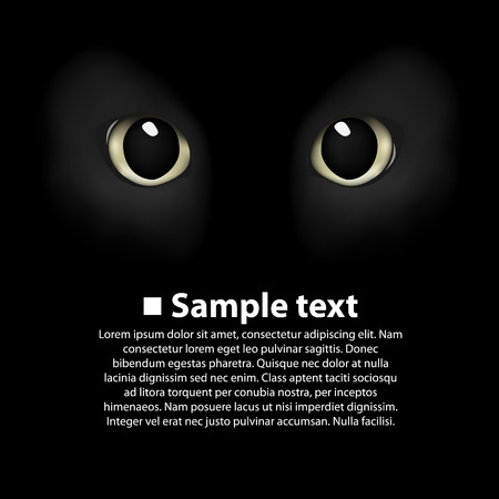 cats eyes: Cats eyes on a black background. Vector Illustration