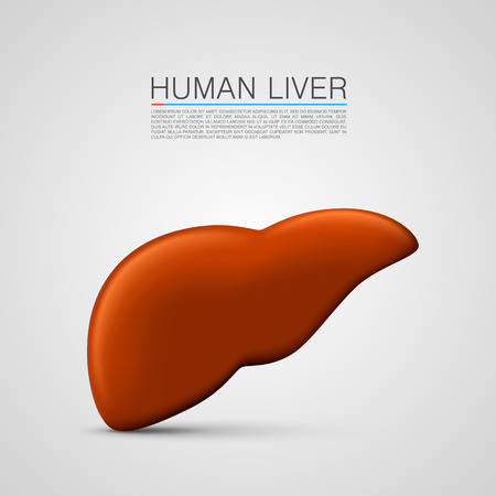 liver cirrhosis: liver sign medical object art. Vector Illustration