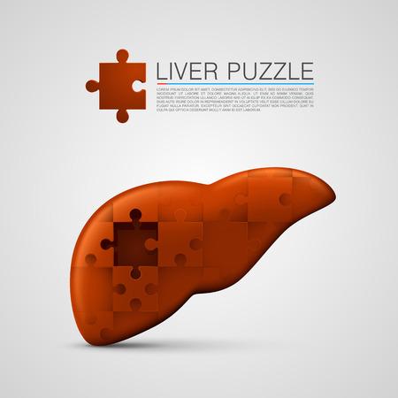 higado humano: rompecabezas hígado firmar técnica médica. Ilustración vectorial