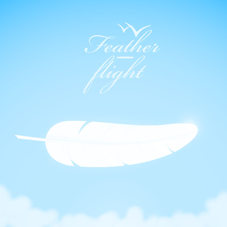 poet: White feather in the sky background. Vector illustration.