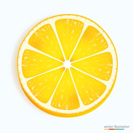 lemon slice: Fresh lemon slice icon on a white. Vector illustration