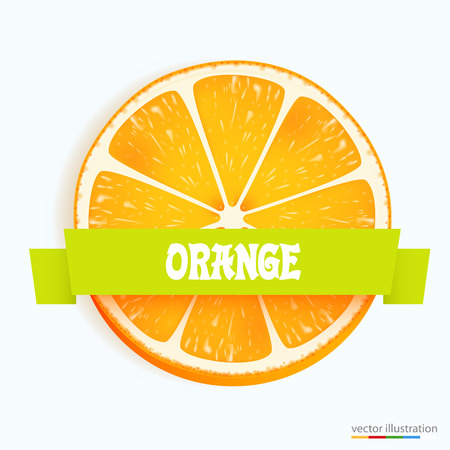 rind: Fresh orange slice with stripe. Vector illustration Illustration