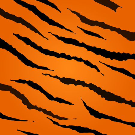 tiger skin: Tiger skin vector pattern. Collection of animal texture.