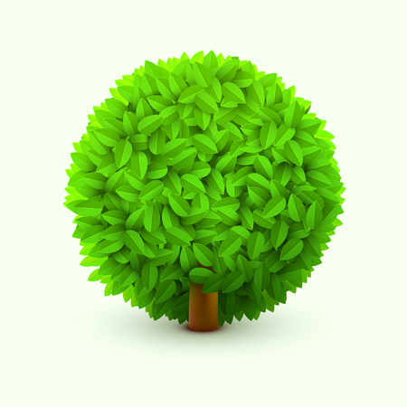 Cute bush with green leaves. Realistic spring or summer foliage, bush or hedge. Eco concept.