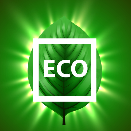 Green leaf with light beams and eco frame. Eco nature background concept.