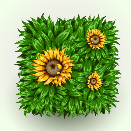 details: Realistic beautiful grass frame with sunflowers.