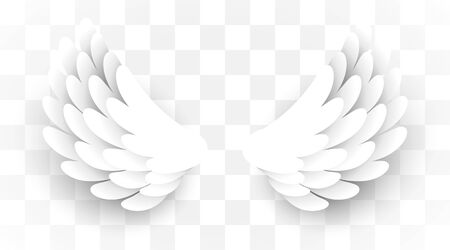 Artificial white paper wings background on transparent background.. Vector illustration