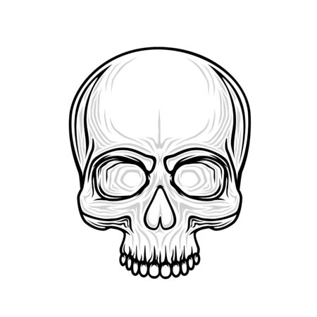Human skull isolated on black, color object.