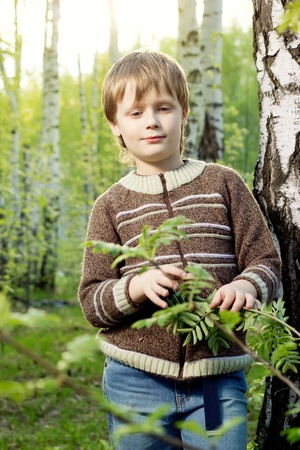 blond boy: Smiling little boy in spring birch sunny forest