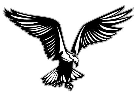 Ave rapaz en vuelo sobre fondo blanco, ilustración vectorial.