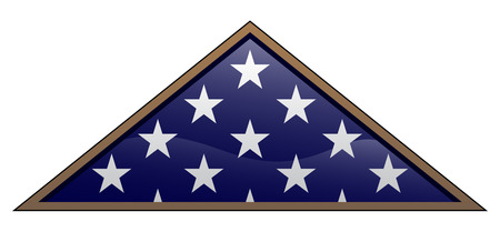 Military Veteran Folded American Flag Vector Illustration Çizim