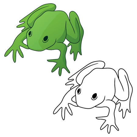 Frog in both full color green tones and black outline version isolated vector illustration Stock Illustratie