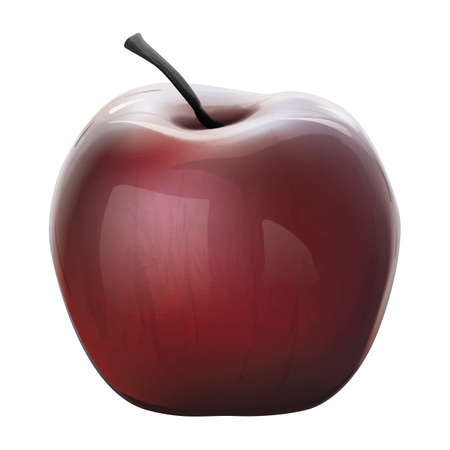 Beautiful realistic nicely detailed vector illustration of healthy shiny red apple, isolated for easy editing.