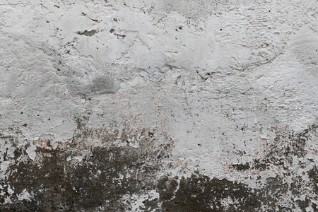 Grungy white and grey wall texture