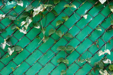 Green plastic wall with metal mesh texture