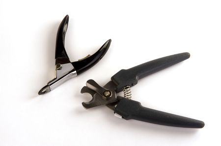 nail clippers: tw different kinds of nail clippers for dogs