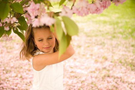 cherry blossom: cute little girl under a cherry blossom tree