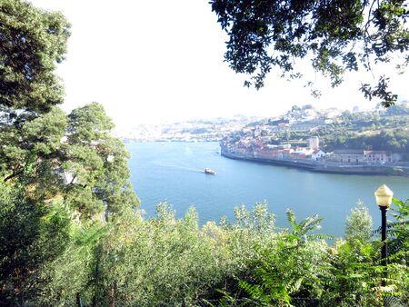 Panoramic views of Porto from a park 版權商用圖片