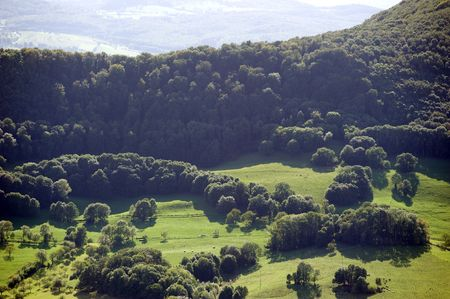 luscious: luscious landscape in Germany