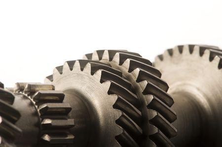 serrate: gear wheels
