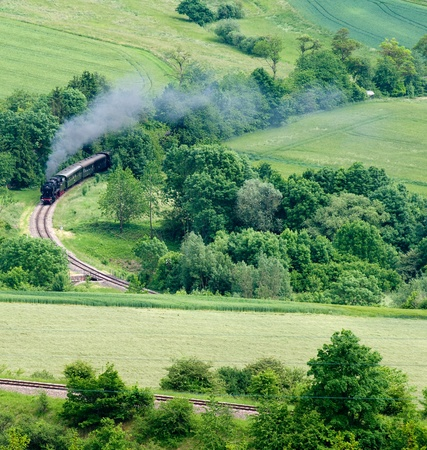 steaming engine in green delicious scenery in the Black Forest