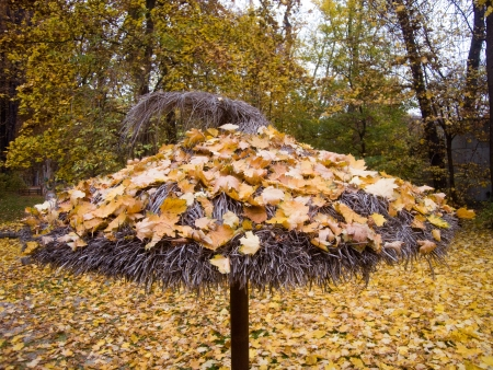 autumnally: a sunshade made of straw full with autumnally leaves
