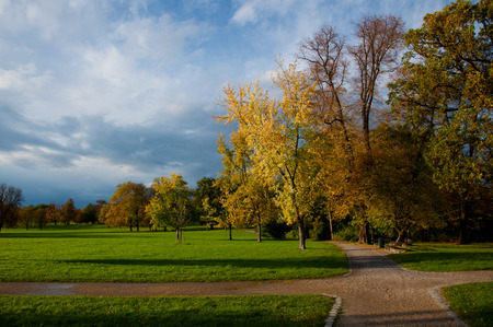 autumnal evening sunshine enlightening trees and meadows in a colorful park photo