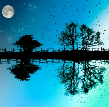 The lake,fence and and trees on dark sky background with moon and stars,fantasy illustration