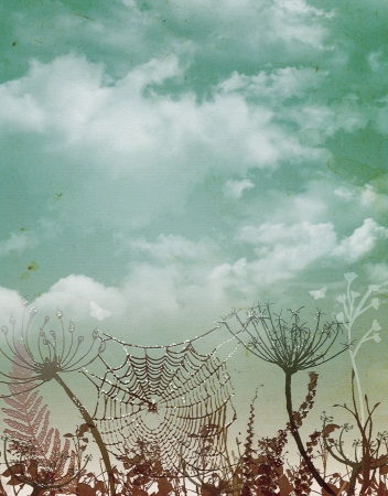 seasonic: Plants and spider web on the field,vintage style  Stock Photo