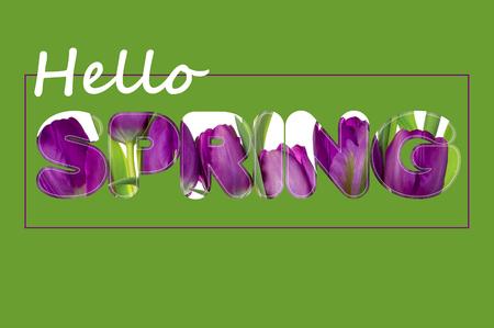 Il y a des fleurs dans le texte PRINTEMPS, vert Banque d'images - 74477311