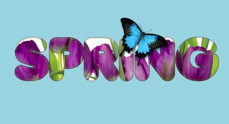 Il y a des fleurs dans le texte avec papillon PRINTEMPS Banque d'images - 74479850