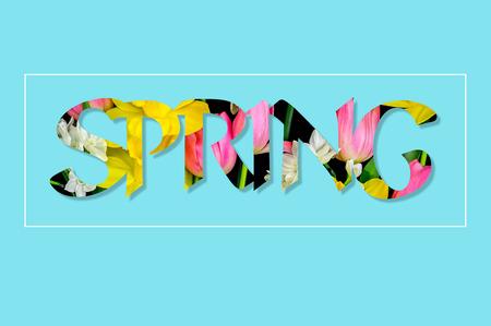 Il y a des fleurs dans le texte PRINTEMPS, turquoise Banque d'images - 74478200