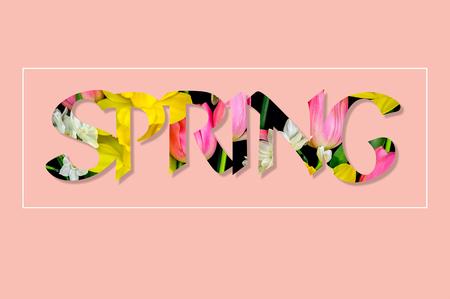 Il y a des fleurs dans le texte PRINTEMPS, rose Banque d'images - 74479853