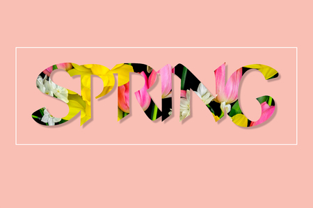 There are flowers in the text SPRING, pink