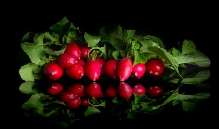 Bouquet de radis sur fond noir Banque d'images - 92660681