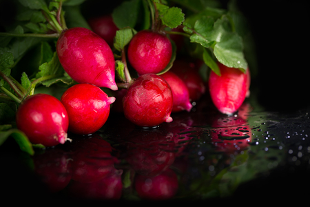 Radish bunch on black background Banque d'images - 92660679