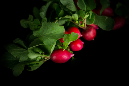 Radish bunch on black background Banque d'images - 92660525