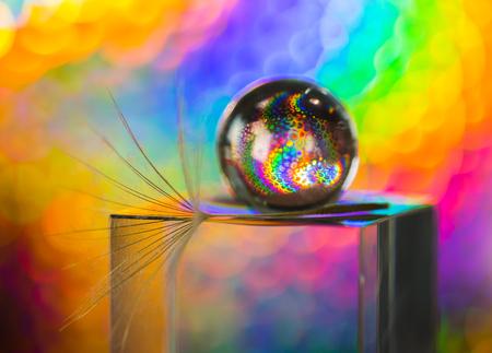 Il y a un pissenlit sur le cube de verre et fond coloré Banque d'images - 92872199