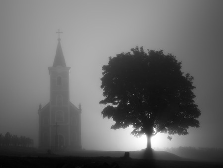 Hungary, Hegymagas, old church and old tree