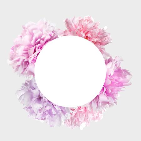 Fleurs de pivoine rose avec cadre et espace de copie Banque d'images - 93712552