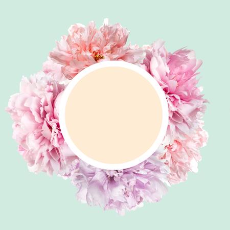 Fleurs de pivoine rose avec cadre et espace de copie Banque d'images - 93712561