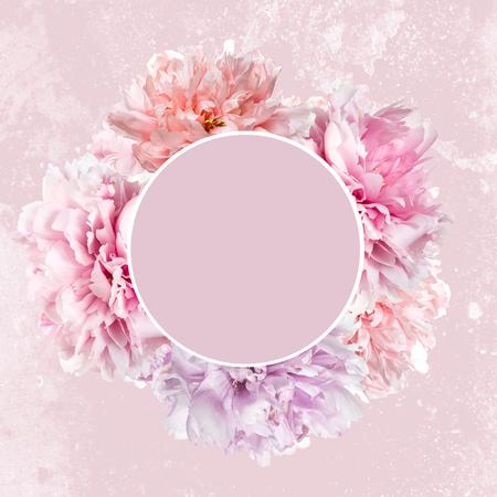 Fleurs de pivoine rose avec cadre et espace de copie Banque d'images - 93712562