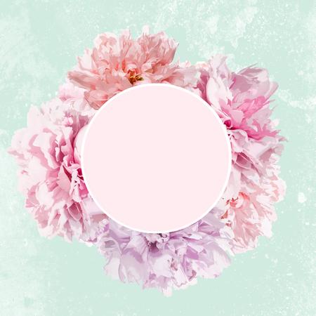 Fleurs de pivoine rose avec cadre et espace de copie Banque d'images - 93712563